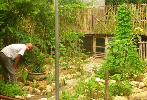 loving the garden