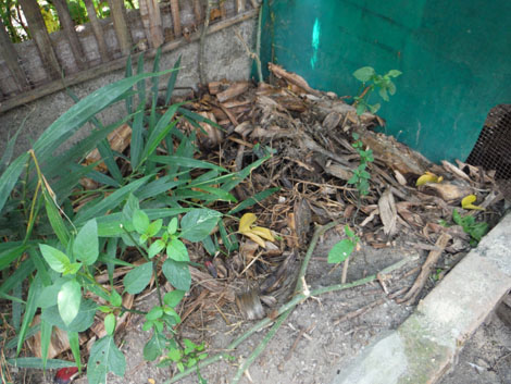 Sudut kompos lain di kebun belakang. Tips: Menaburi bagian atas tumpukan kompos dengan tanah dan/atau kotoran ternak mempercepat proses penguraian dan peluruhan.