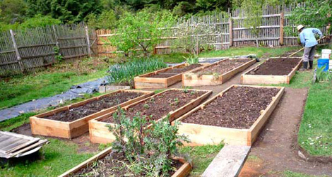 raised-beds-a